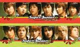 superjunior2005.jpg